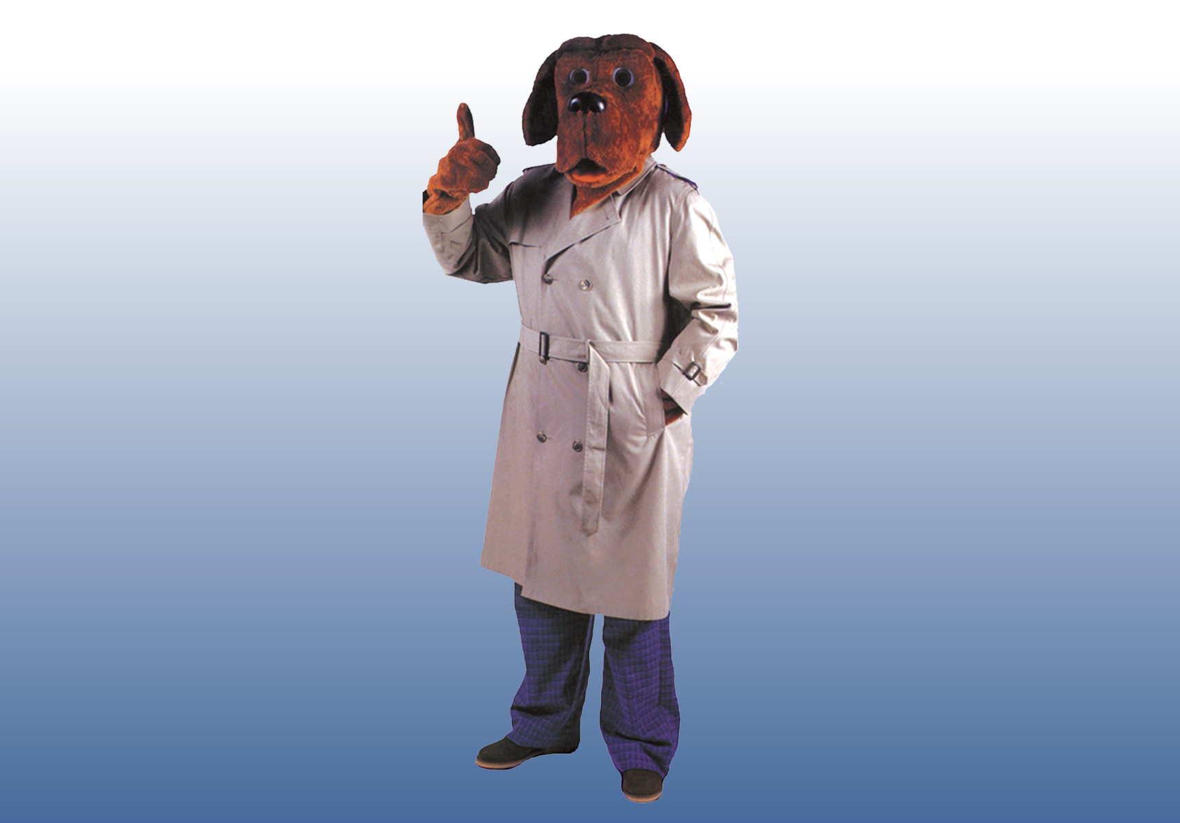 mcgruff the crime dog costume